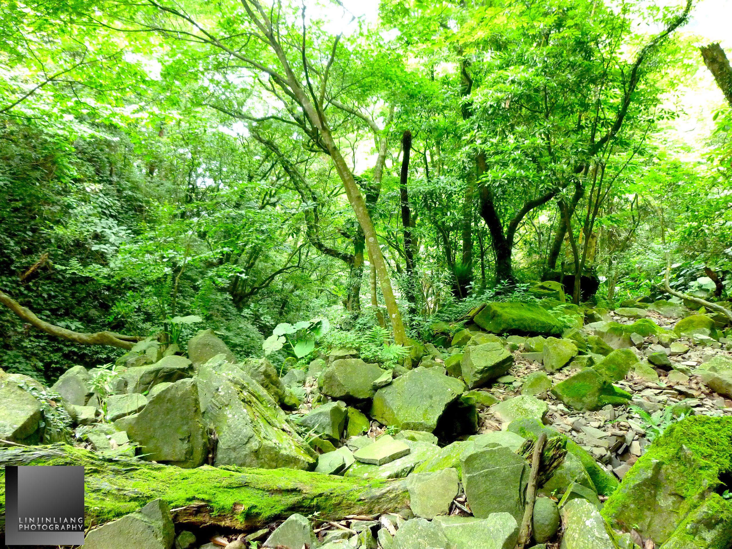 淡水內柑宅古道/紅葉谷瀑布(攝影/林金亮 L Photography)。